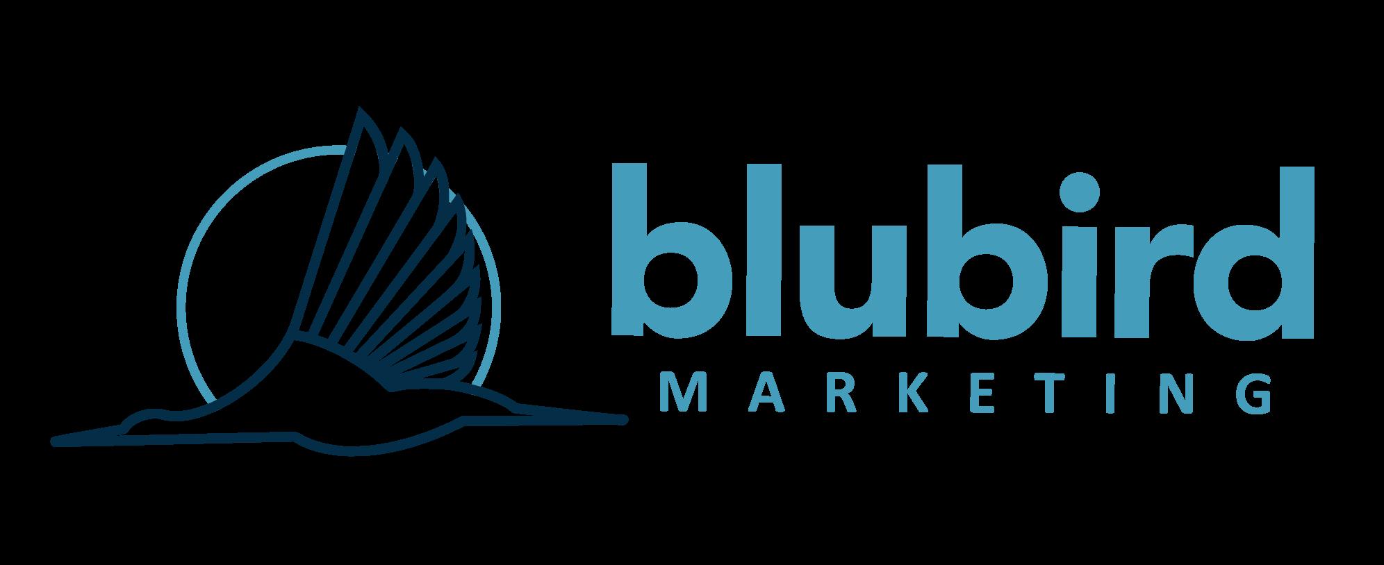 Expert Small Business Marketing Strategies | Blubird Marketing